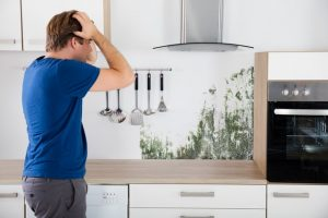 Hiring A Mold Removal Contractor: Top 10 Questions You Should Ask! Thinking about hiring a mold removal contractor? Get YES answers to ALL of these questions before signing a contract. Learn more!