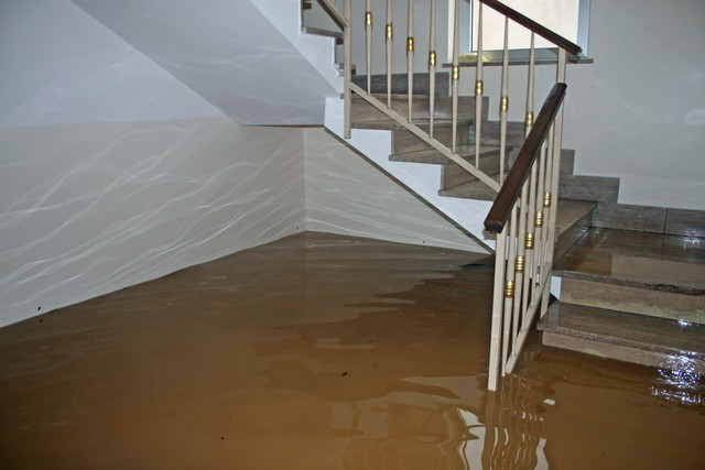 Got Water Damage? Here Are 9 Reasons You Should Call Professionals!