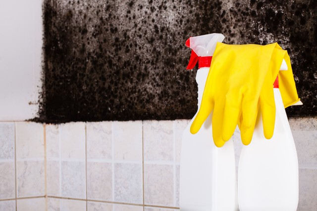 Killing Mold and the Myth of Bleach!: Some information on the web still suggests using chlorine bleach to kill mold in your home. Here are 3 compelling reasons not to.