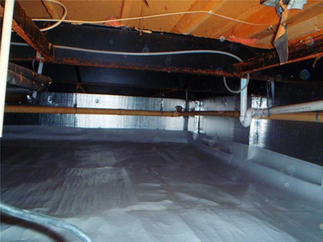Why Does Mold Grow In Your Crawlspace?