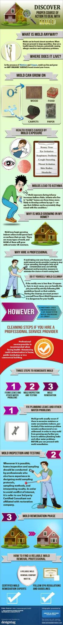 Mold Prevention: 10 Tips Summary!