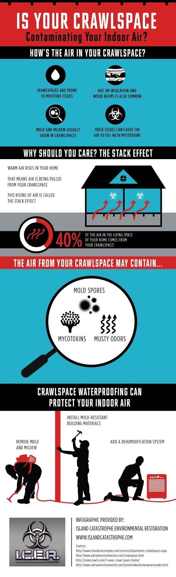 Why Does Mold Grow In Your Crawlspace Summary!