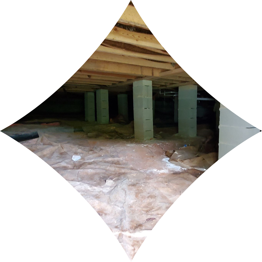 dirty crawl space with mold on struts | dirty crawl space | NuTech Mold & Water