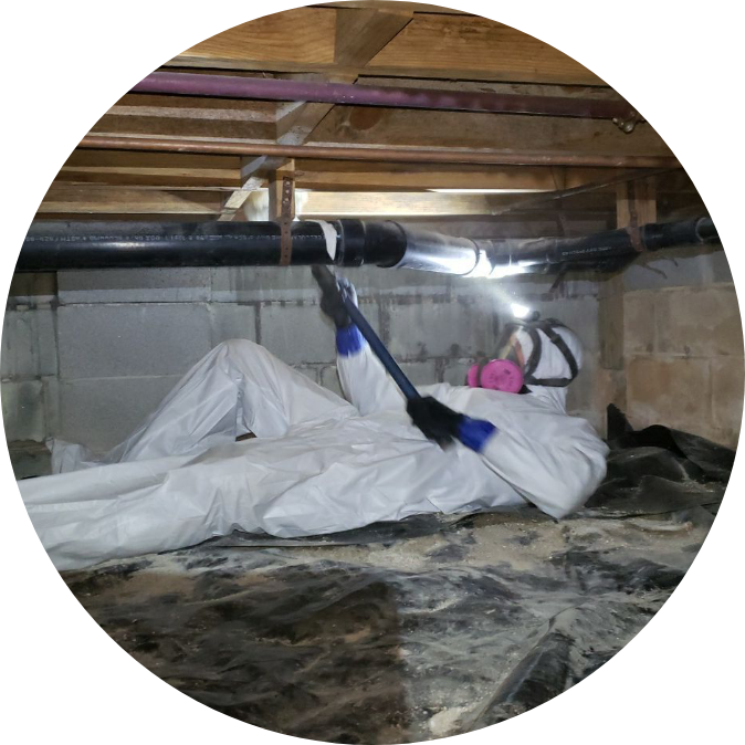 Man in crawl space removing mold | mold removal | NuTech Mold & Water |
