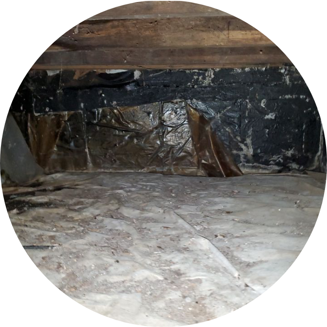crawl space with mold and debris | NuTech Mold & Water